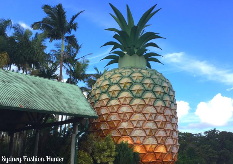 Sydney Fashion Hunter: Sunshine Coast Markets: Big Pineapple