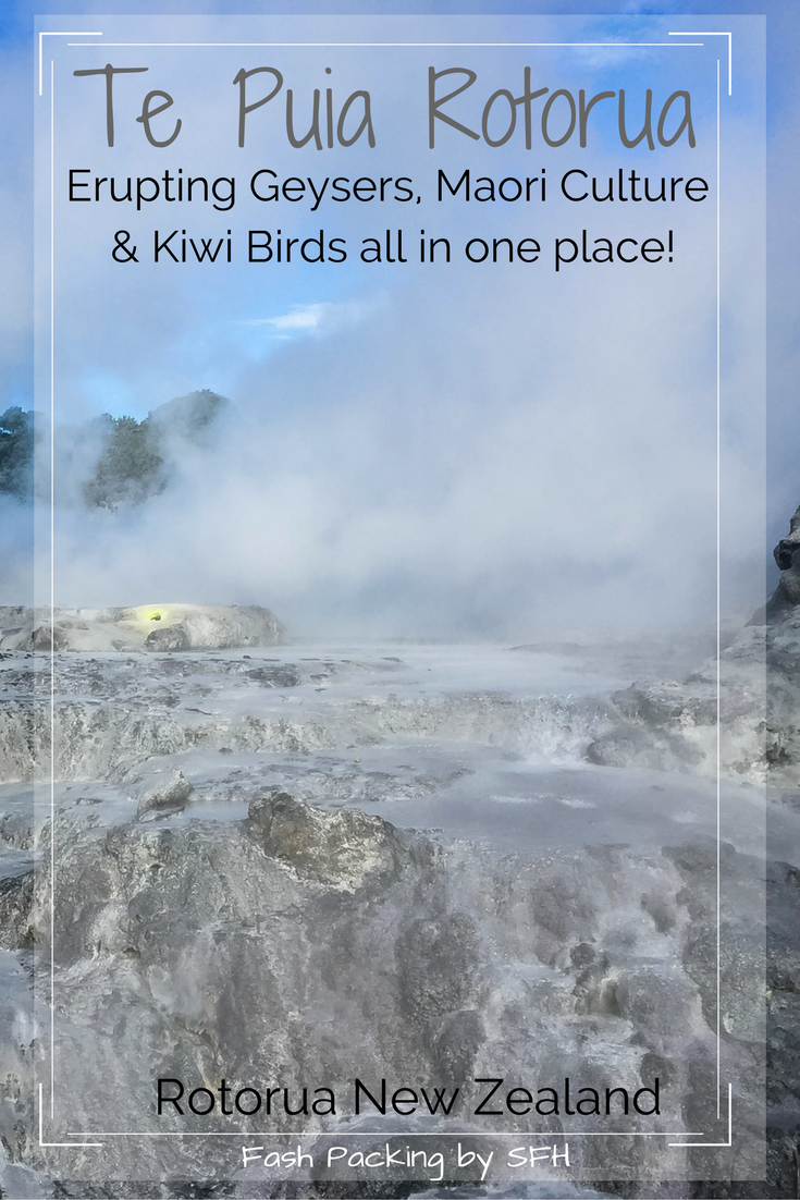 Te Puia Rotorua offers a bit of everything. Be awed by erupting geysers, catch a glimpse of a Kiwi bird and learn about rich Māori culture all in one place. Full review here