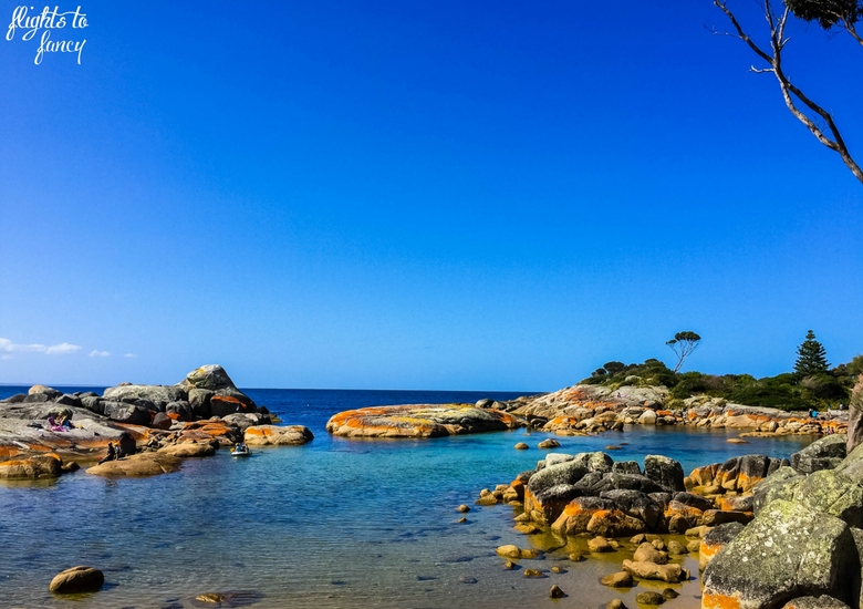 Flights To Fancy: Tasmanian Road Trip - Bay Of Fires