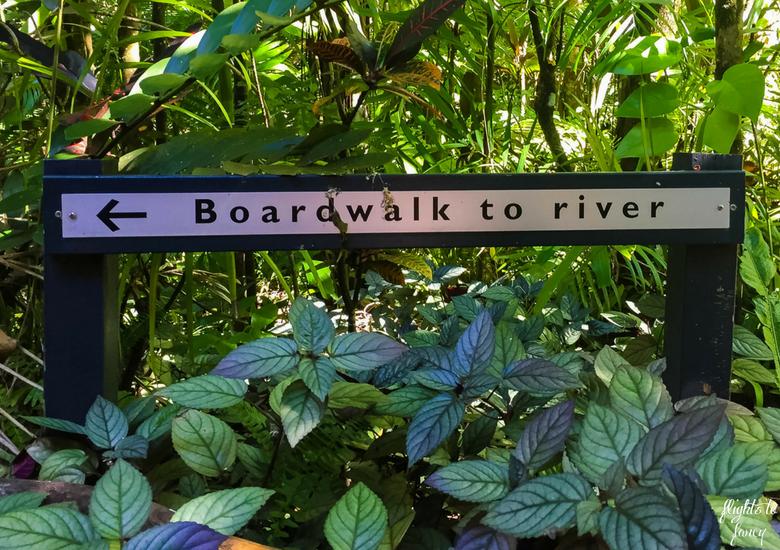 Flights To Fancy: Silky Oaks Lodge - Daintree Rainforest