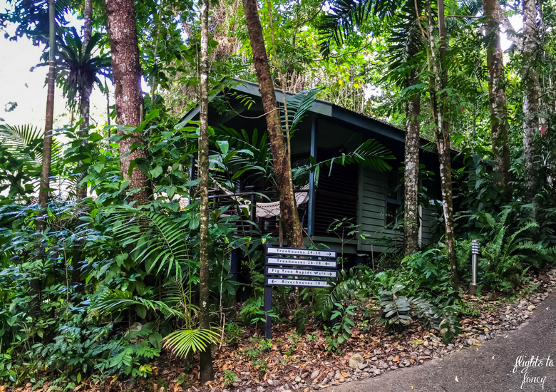 Flights To Fancy: Silky Oaks Lodge Mossman Queensland - Cabin