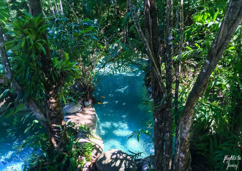 Flights To Fancy: Silky Oaks Lodge Mossman Queensland - Pool