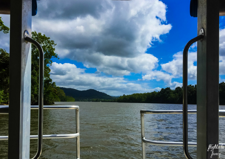 Flights To Fancy_ Bruce Belchers Daintree River Cruises_ Daintree River Queensland Australia