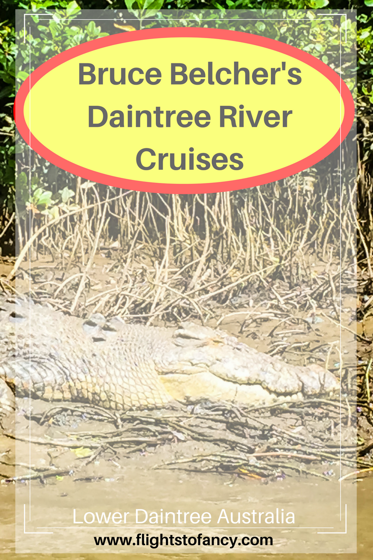 Not all Daintree tours are created equal. There is much to explore in Australia's stunning Tropical North Queensland and Bruce Belcher's Daintree River Cruises is the best Daintree crocodile cruise in the region. If you want to spot a saltie in the wild without becoming lunch, this one is for you!