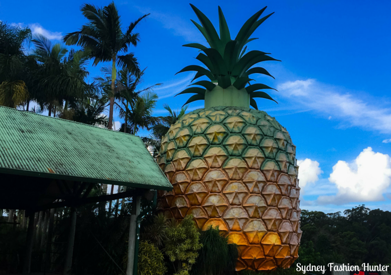 Sydney Fashion Hunter: Sunshine Coast Weekend - Big Pineapple