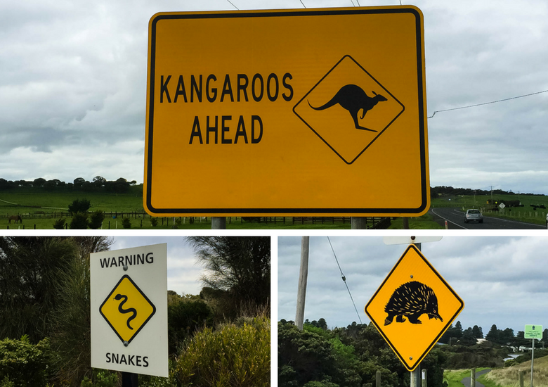 Fash Packing by SFH: Road Trippin' Australia's Iconic Great Ocean Road - Road Signs