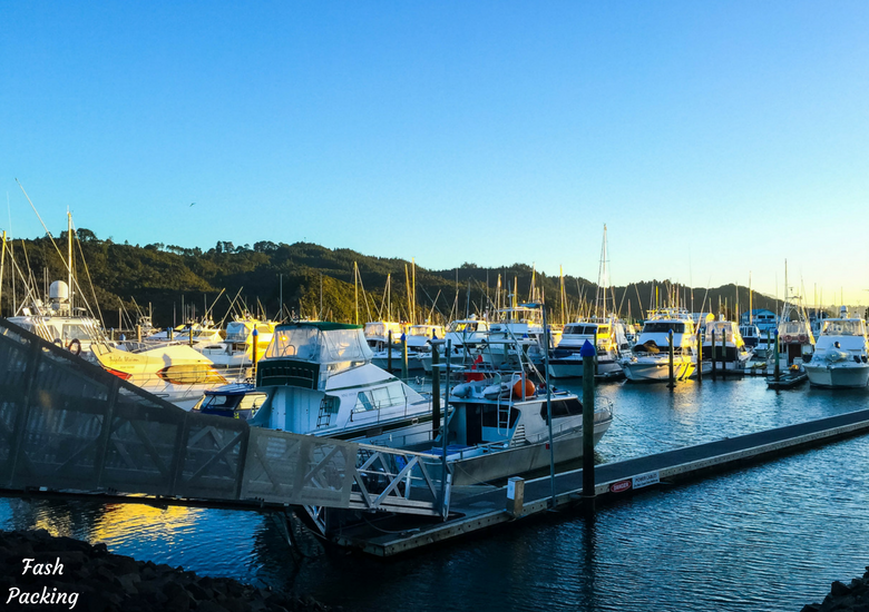 Fash Packing: New Zealand Road Trip 7 Day North Island Itinerary - Whitianga Marina