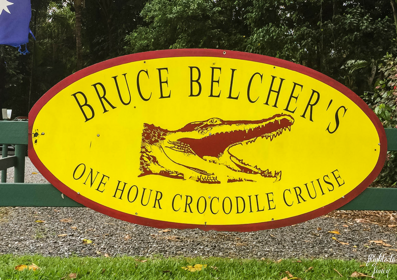 Bruce Belchers Daintree River Cruises - Daintree Tours & Croc Spotting In Tropical North Queensland