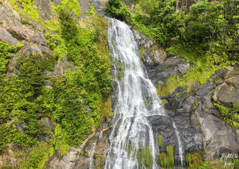 Flights To Fancy: Kuranda Scenic Railway Gold Class - Stony Creek Falls
