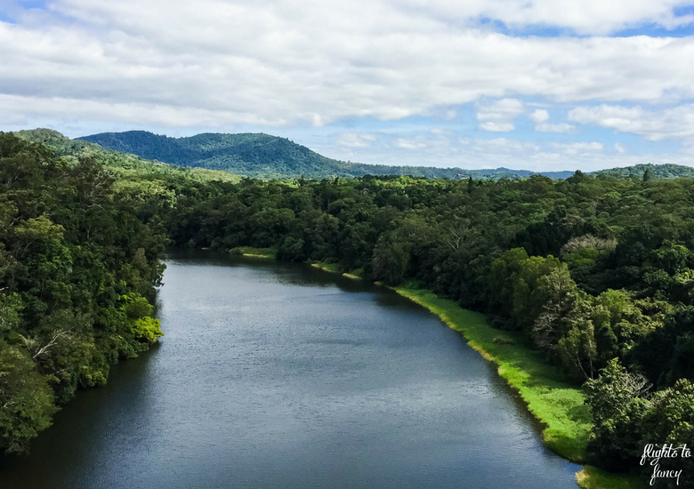 Flights To Fancy: Skyrail Rainforest Cableway Cairns - Barron River from Skyrail Cairns