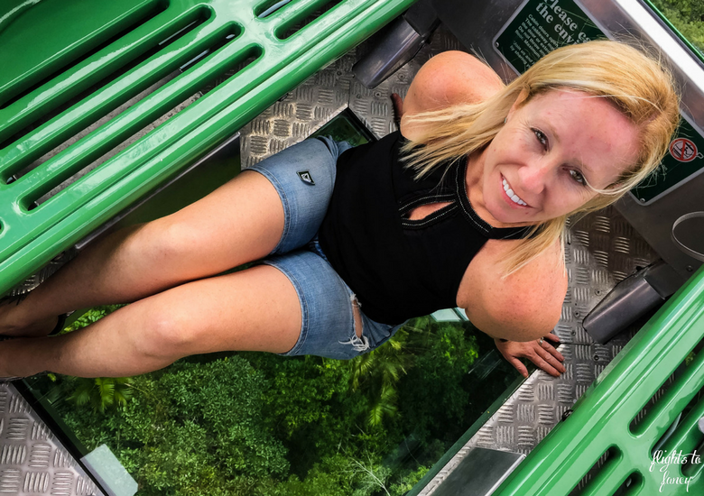Flights To Fancy: Skyrail Rainforest Cableway Cairns - Glass Floor Cablecar
