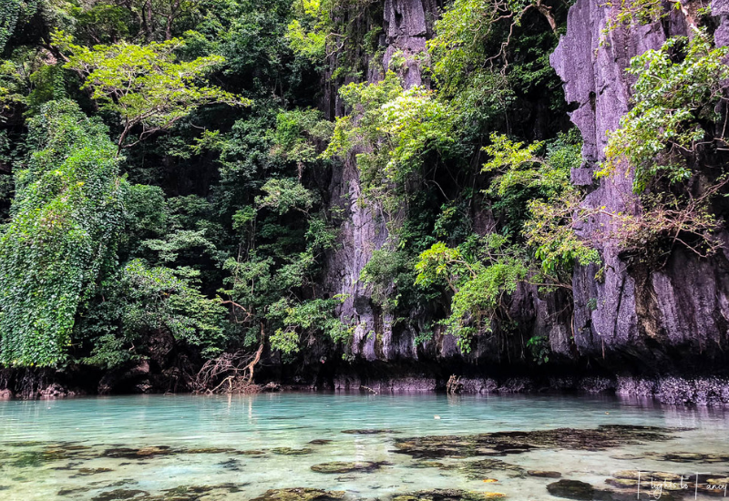 El Nido Island Hopping Tour - Shallow water of El Nido Big Lagoon