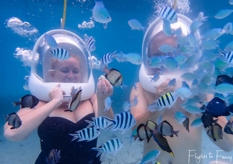 Flights To Fancy Featured Image - Helmet Diving Boracay