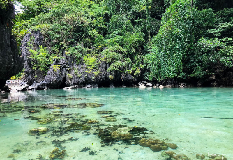 Water's edge El Nido Big Lagoon Miniloc Island