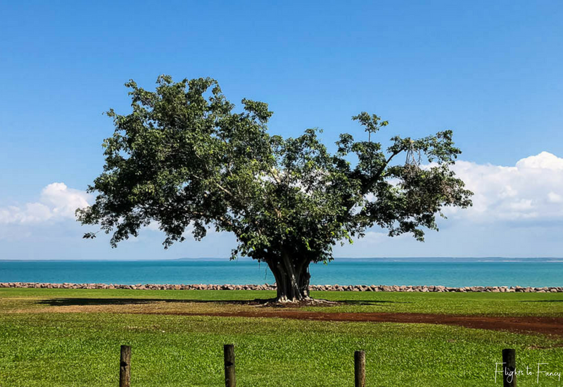 Bicentennial Park Darwin Esplanade