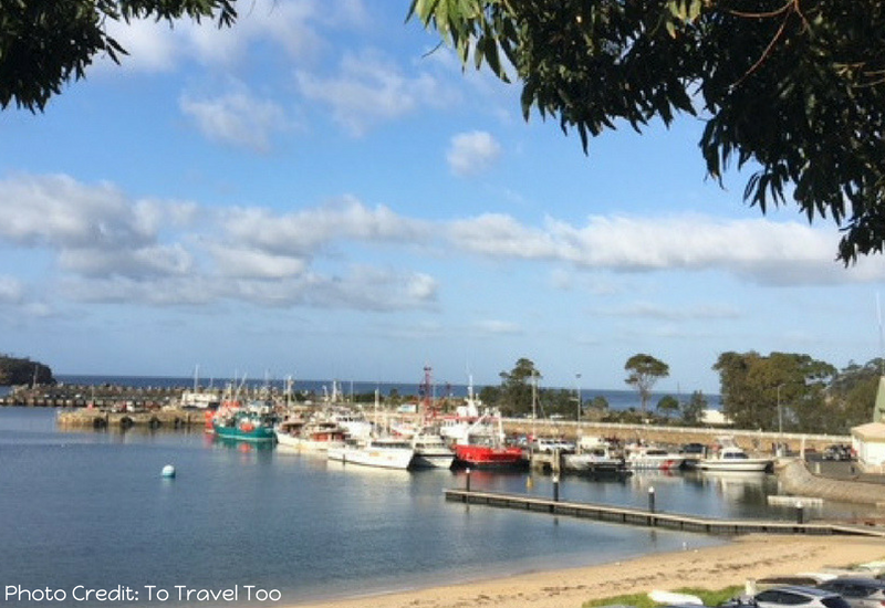 Weekend Road Trips From Sydney - Mollymook