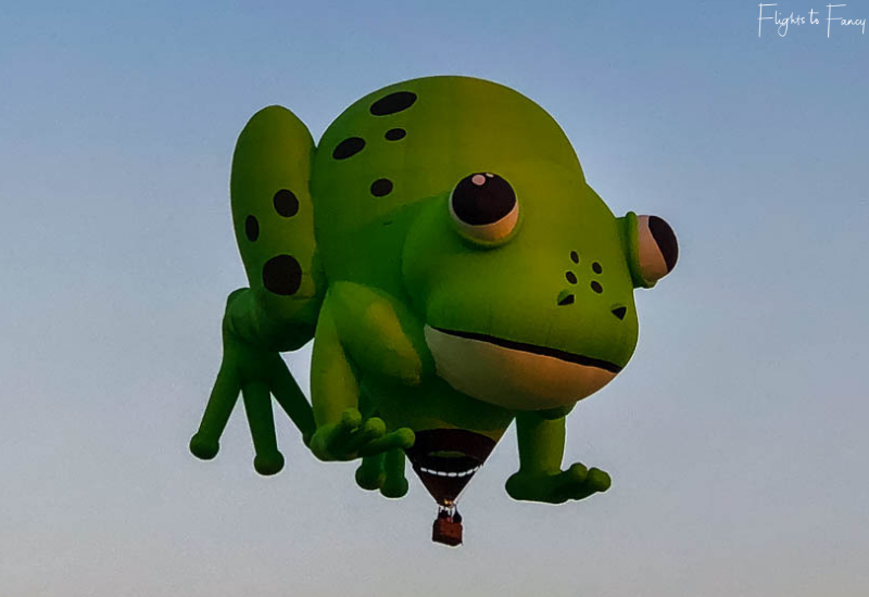 Canberra Balloon Festival Frog