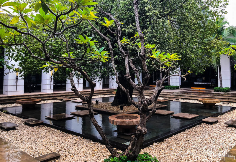 Feature Tree in The Park Hyatt Siem Reap Courtyard