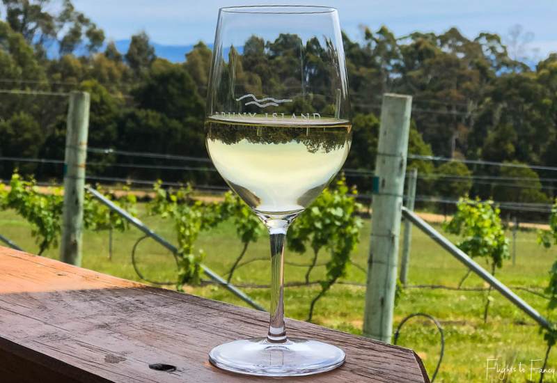 Bruny Island Premium Wines Tasmanian Sauvignon Blanc enjoyed among the vines
