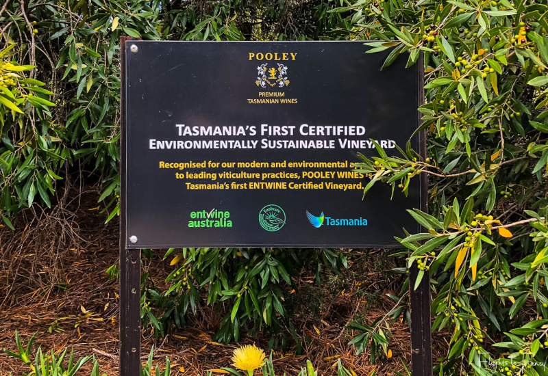 Pooley Wines: Tasmania's First Certified Environmentally Sustainable Vineyard