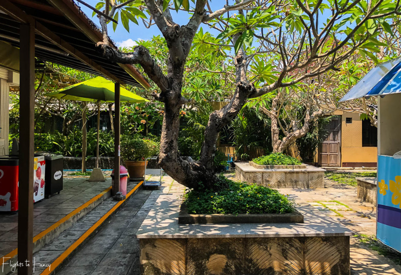 Bangkok Airways Review: Koh Samui Airport Gardens